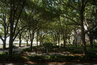 Charleston Park 2